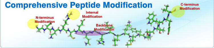 Peptide-Modifications-new.jpg